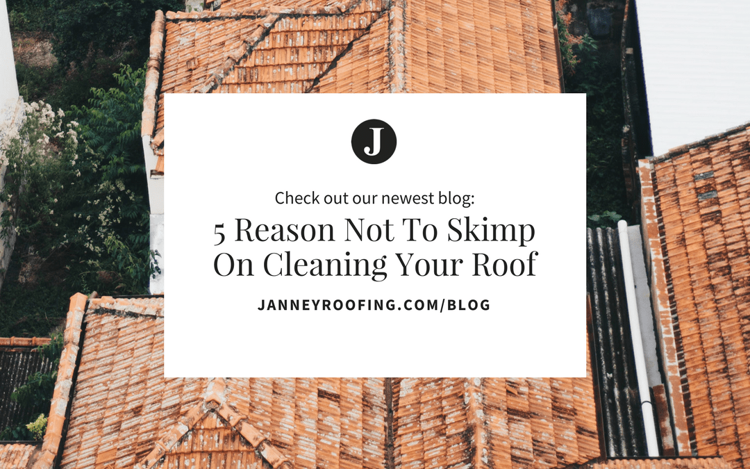 5 Reasons you should be taking better care of your roof!