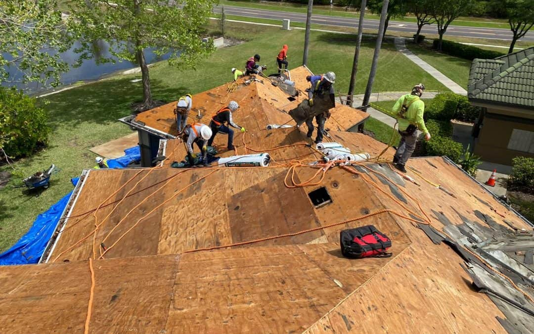 3 Reasons To Be Excited About National Roofing Week